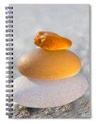 The Golden Egg Spiral Notebook