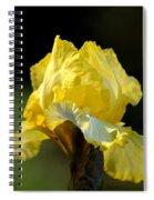 The Golden Iris Spiral Notebook