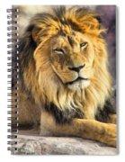 The Golden King 2 Spiral Notebook