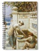 The Goldfish Pond Spiral Notebook