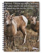 The Good Shepherd's Sheep Spiral Notebook