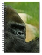 The Gorilla 2 Spiral Notebook