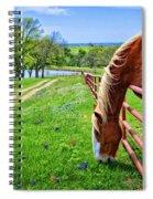 The Grass Is Always Greener... Spiral Notebook