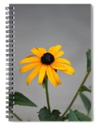 The Gray Day Of Yellow Spiral Notebook