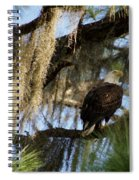 The Great Bald Eagle  Spiral Notebook