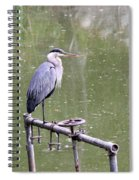 The Great Blue Spiral Notebook