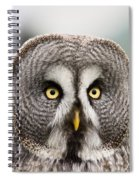 The Great Grey Owl  Spiral Notebook