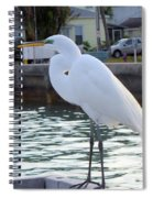 The Great White Egret Spiral Notebook