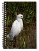 The Great White Heron Spiral Notebook
