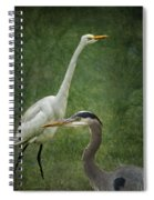 The Greats - Birds That Is... Spiral Notebook