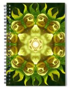 The Green Buddha Spiral Notebook