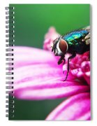 The Green Fly Spiral Notebook
