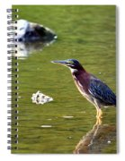 The Green Heron Spiral Notebook