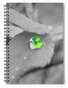 Green Pearl Spiral Notebook