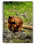 The Grizzly Spiral Notebook