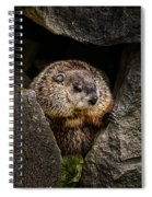 The Groundhog Spiral Notebook