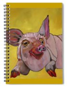 The Happiest Pig In The World Spiral Notebook