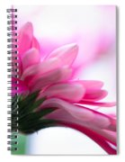 The Happy Flower Pink Daisy Spiral Notebook