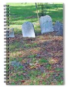 The Headstones Of Slaves Spiral Notebook