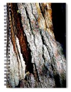 The Heart Of Barkness In Mariposa Grove In Yosemite National Park-california  Spiral Notebook