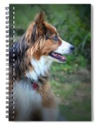 The Heart Of Dixie Spiral Notebook