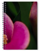 The Heart Of The Lily Spiral Notebook