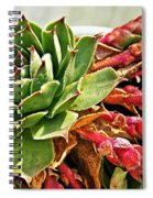 The Hen And Her Chicks  Spiral Notebook