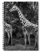 The Higherups Spiral Notebook