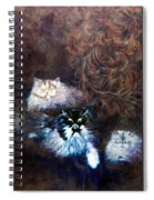 The Himalayans Spiral Notebook