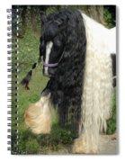 The Hitcher Spiral Notebook