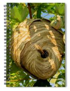 The Hive Spiral Notebook