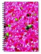 The Honey Bee Spiral Notebook