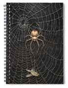 The Hunter And Its Pray - A Gold Fly Caught By A Gold Spider Spiral Notebook