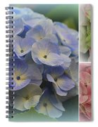 The Hydrangeas Of Late Spring Spiral Notebook