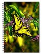 The Illuminated Spiral Notebook