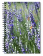 The Importance Of Bees Spiral Notebook