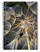 The Inner Weed Oil Spiral Notebook