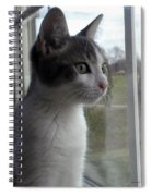 The Inquisitive Kitty Jackson Spiral Notebook