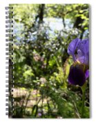 The Iris And St Francis Spiral Notebook