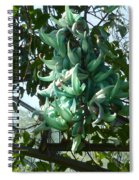 The Jade Vine Spiral Notebook