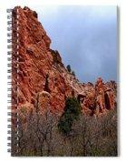 The Jagged Edges Spiral Notebook