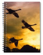 The Journey South Spiral Notebook
