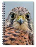 The Kestrel Face To Face Spiral Notebook