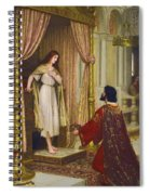 The King And The Beggar-maid Spiral Notebook