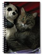 The King Kitty And Panda 01 Spiral Notebook