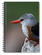 The King Of Fishing... Spiral Notebook