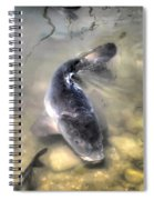 The King Of The Pond Spiral Notebook