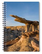 The King Of Wings 1 Spiral Notebook