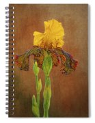 The Kings Prize Iris Spiral Notebook