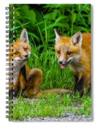 The Kits Spiral Notebook